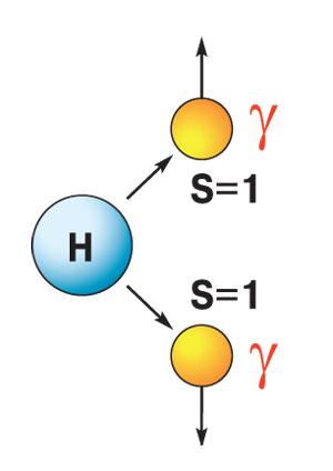 аспад бозона Хиггса